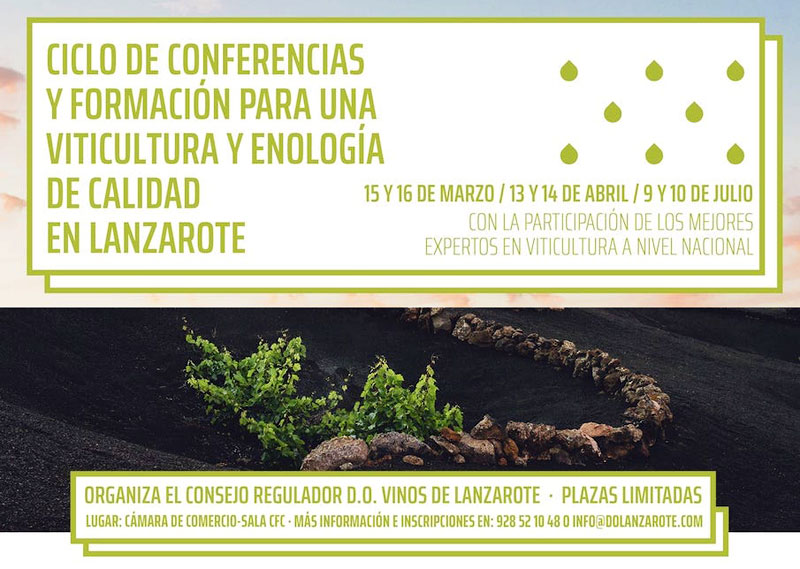 Are you interested in training to improve viticulture and oenology in Lanzarote?